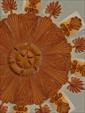 Rosace en kit n°44 - style baroque